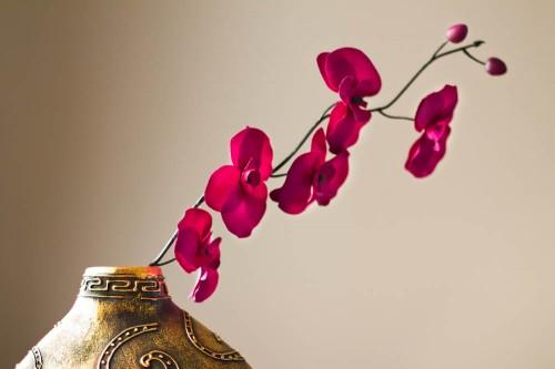 Balance (Pink & Gold)