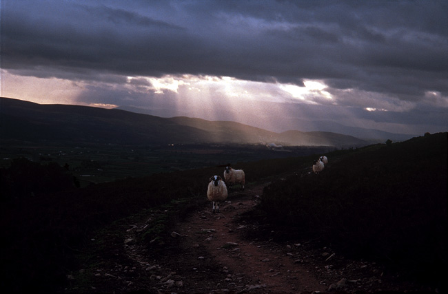 """Slievenamon"", photograph by Cyril Helnwein"