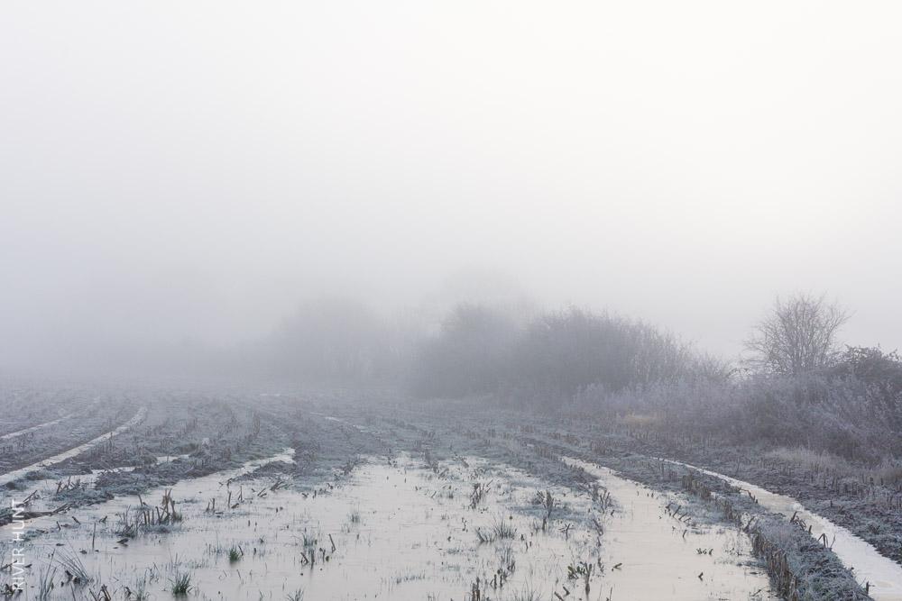 Winter III (reflect)